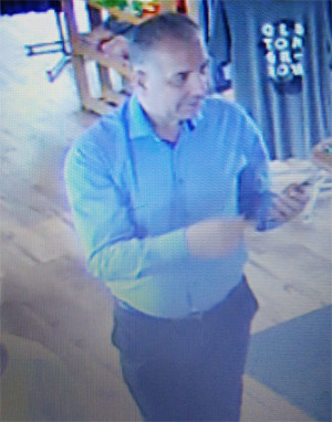 Theft and fraud suspect