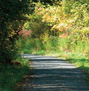 KP Trail